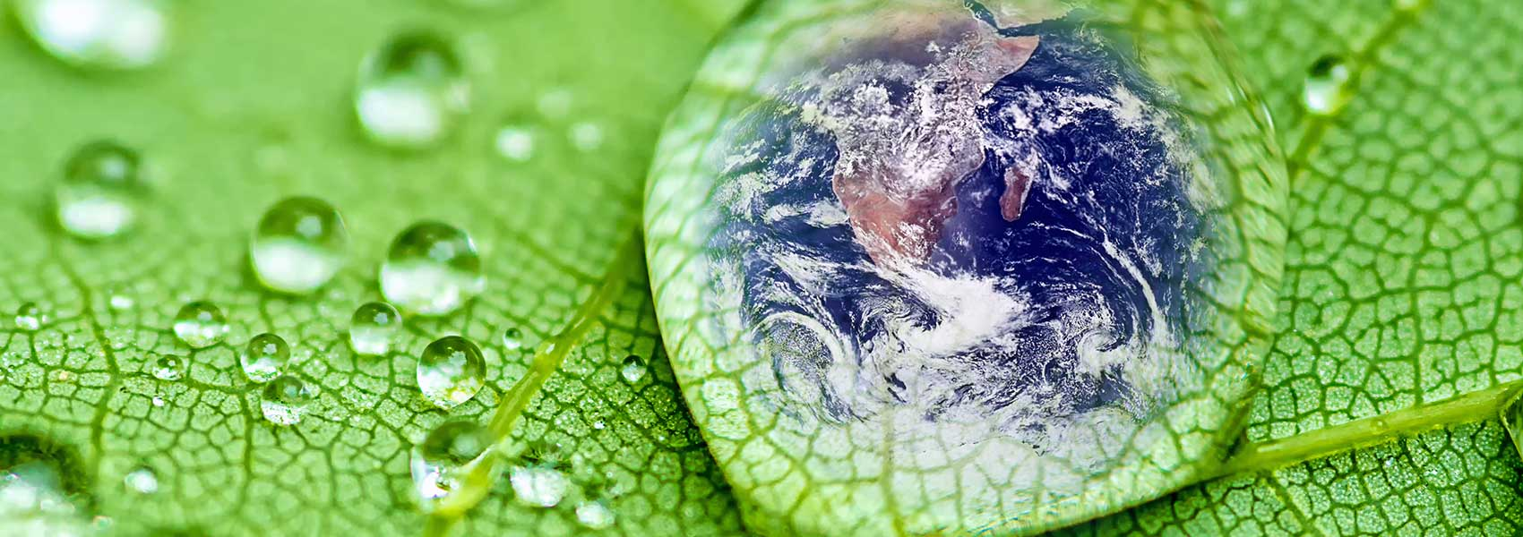 US EPA Completed Pilot Assessment of Ecolabels and Standards